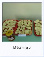 meznapgal16